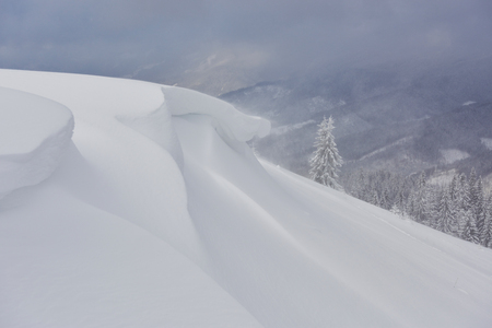Beautiful winter landscape with snow covered trees and snow cornice.
