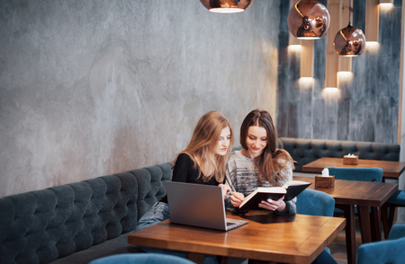 One-on-one meeting.Two young business women sitting at table in cafe.Girl shows colleague information on laptop screen.Meeting friends, dinner together.Teamwork, business meeting. Freelancers working.