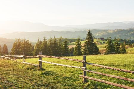 Karpaten. Das Foto wurde hoch in den Karpaten aufgenommen. Schöner Himmel und hellgrünes Gras vermitteln die Atmosphäre der Karpaten.