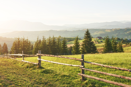 Montagnes carpates. La photo a été prise dans les montagnes des Carpates. Beau ciel et herbe verte brillante, véhiculent l'atmosphère des Carpates.