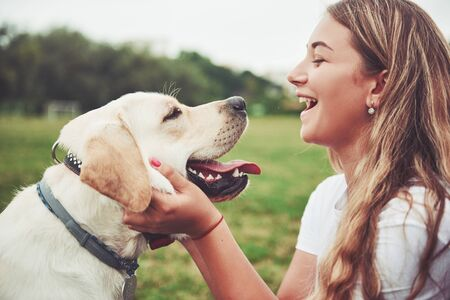 Frame with a beautiful girl with a beautiful dog in a park on green grass Standard-Bild