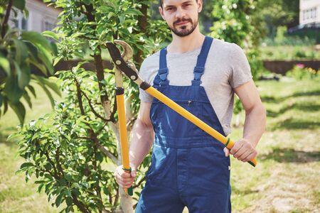 Gardener cuttings of garden plants in the spring.