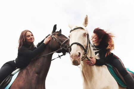 Two young pretty girls riding a horses on a field. They loves animals andhorseback riding. Stok Fotoğraf