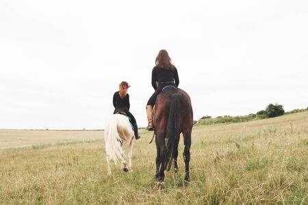 Two young pretty girls riding a horses on a field. They loves animals andhorseback riding. Zdjęcie Seryjne