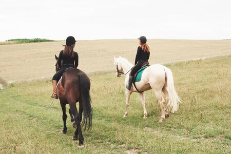 Two young pretty girls riding a horses on a field. They loves animals andhorseback riding. Archivio Fotografico