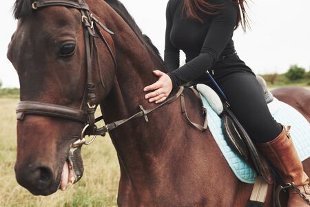Closeup picture of young beautiful woman rides a horse. 免版税图像