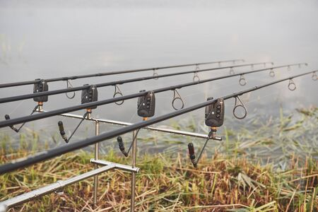 Carp fishing rods standing on special tripods. Expensive coils and a radio system of crochet.
