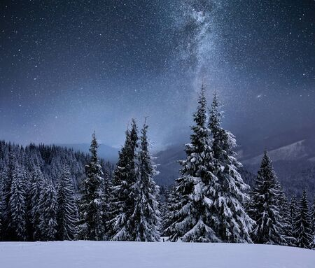 Forest on a mountain ridge covered with snow. Milky way in a starry sky. Christmas winter night. 版權商用圖片