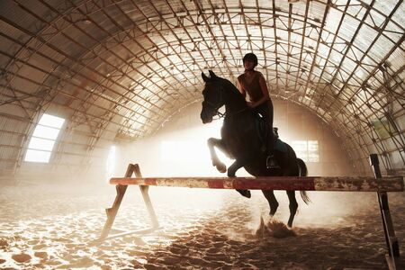 Majestic image of horse horse silhouette with rider on sunset background. The girl jockey on the back of a stallion rides in a hangar on a farm and jumps over the crossbar. The concept of riding. Zdjęcie Seryjne