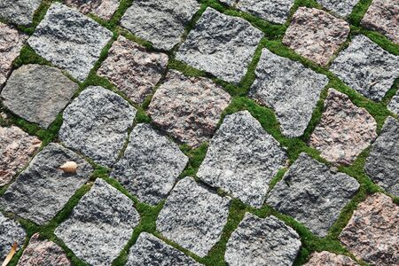 Background of old cobblestone with moss between rocks and dried leaves.