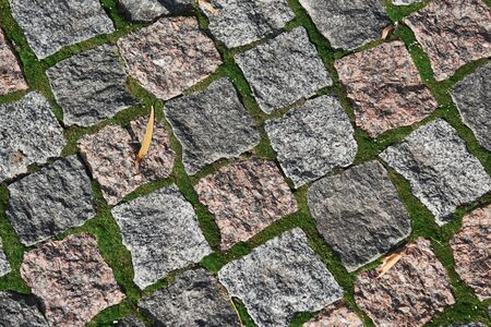 Top view of the cobblestone. Abstract background. Nature is going through the rocks.