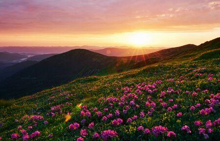 Cielo nuvoloso. Maestose montagne dei Carpazi. Bel paesaggio. Vista mozzafiato. Archivio Fotografico
