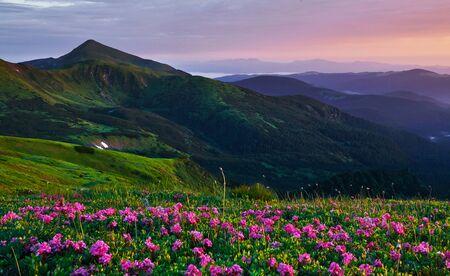 Scenic background. Majestic Carpathian mountains. Beautiful landscape. Breathtaking view.