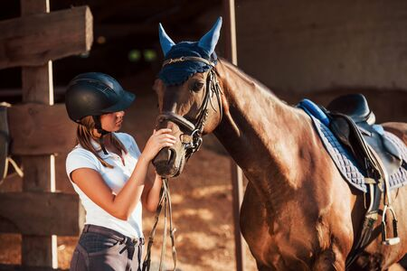 Animal is in blue clothes. Horsewoman in uniform and black protective helmet with her horse. Banco de Imagens