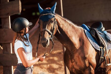 Animal is in blue clothes. Horsewoman in uniform and black protective helmet with her horse. Stockfoto