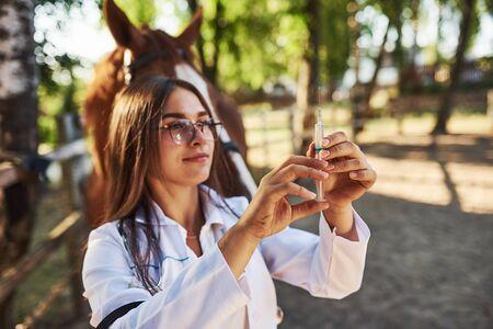 Looks at syringe. Female vet examining horse outdoors at the farm at daytime.
