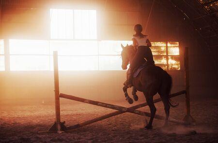 Majestatyczny obraz sylwetki konia z jeźdźcem na tle zachodu słońca. Dżokejka na grzbiecie ogiera jeździ w hangarze na farmie.
