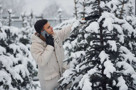 Man walking outdoors, talking by the phone and choosing christmas tree.