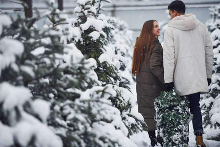 Young couple walking with new christmas tree for the holidays outdoors.
