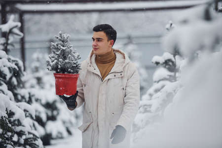 Handsome young man in warm coat holding red pot with fir tree outdoors at daytime.