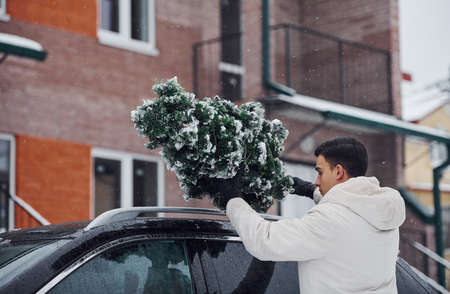Man in white wear putting christmas fir tree on the top of his car outdoors. Stock fotó