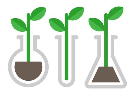 Chemistry icon. Plant in vitro Illustration