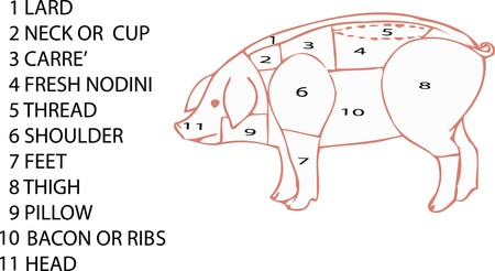 animal dissected parts of the pig Illustration