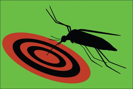 annoying bug Stock Vector - 13655000
