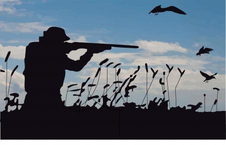 Noir Hunter dans le marais