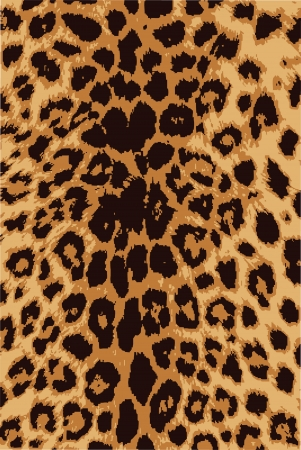 Fur animal