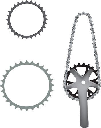 sprocket: bicycle sprocket