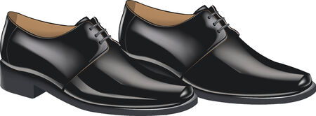 shiny black: shiny black shoes Illustration