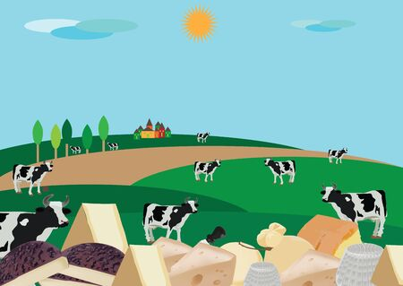 milk production: cheese production