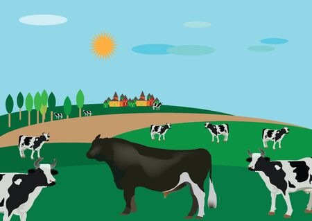 milk production: country landscape with cattle