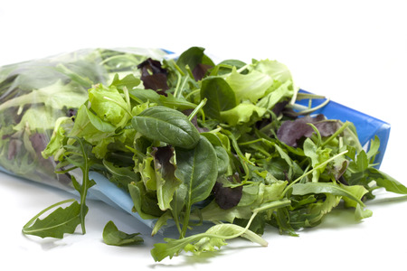 bicolored: various seasonal salad packed