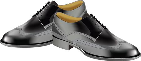 stylish shoe