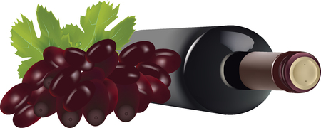 liter: Wine bottle on its side with a bunch of black grapes