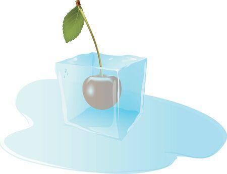 cubos de hielo: fruta de la cereza congelado en el cubo de hielo