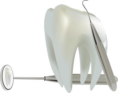 molar: symbol molar tooth Illustration