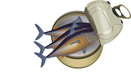 Canned tuna fish on white background