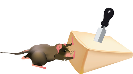 Mouse pushes parmesan funny cartoon