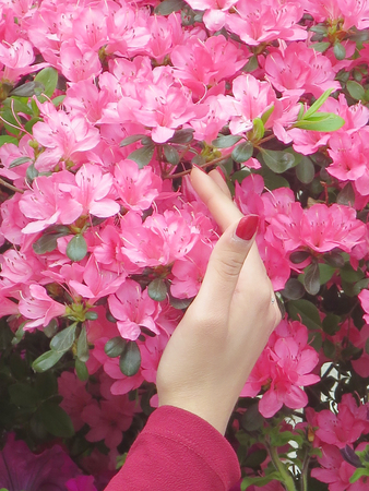 Hand of girl caressing a flower