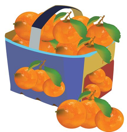 fruit basket for transport with cardboard handle