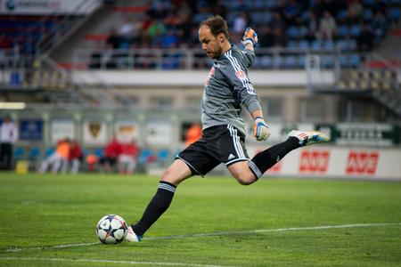 ceske: SK Dynamo Ceske Budejovice goalkeeper