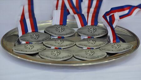 commemorative: PRAGUE  CZE  15 07 2014 _ Commemorative medals for refrees of Czech American Footbal League finals 2014
