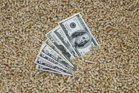 wood pellets: Wood pellets and money, dollars. The concept of savings when using eco-friendly materials.Recycling of waste production .Biofuels. The cat litter.