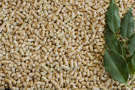 wood pellets: Wood pellets. Biofuels, alternative. Green leaves and biofuel from wood chips in the background.The concept of waste from woodworking.Cat litter.