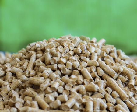 wood pellets: Wood pellets on a green background. Biofuels. Alternative biofuel from wood chips. The cat litter.