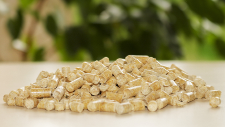 wood pellets: Biofuels. Alternative biofuel from sawdust for burning in boilers. Wood pellets on the background of greenery. Biofuels. The cat litter. Stock Photo