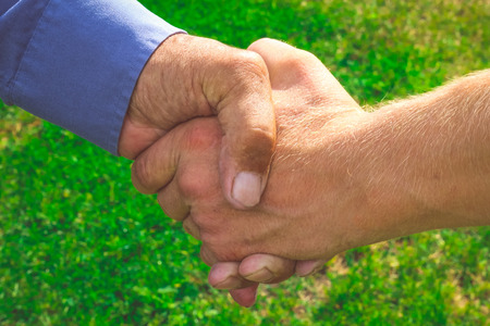 handclasp: Handshake of business partners. Worklife. Business meeting farmers on green background.